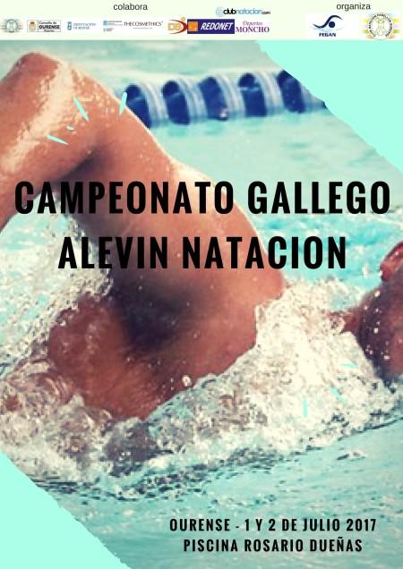 Cto. Gallego de Natación Alevín